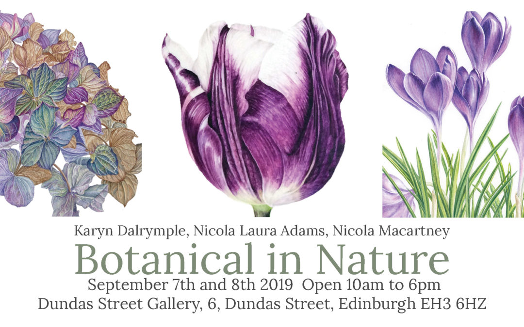 Members Exhibition: Karyn Dalrymple, Nicola Laura Adams and Nicola Macartney