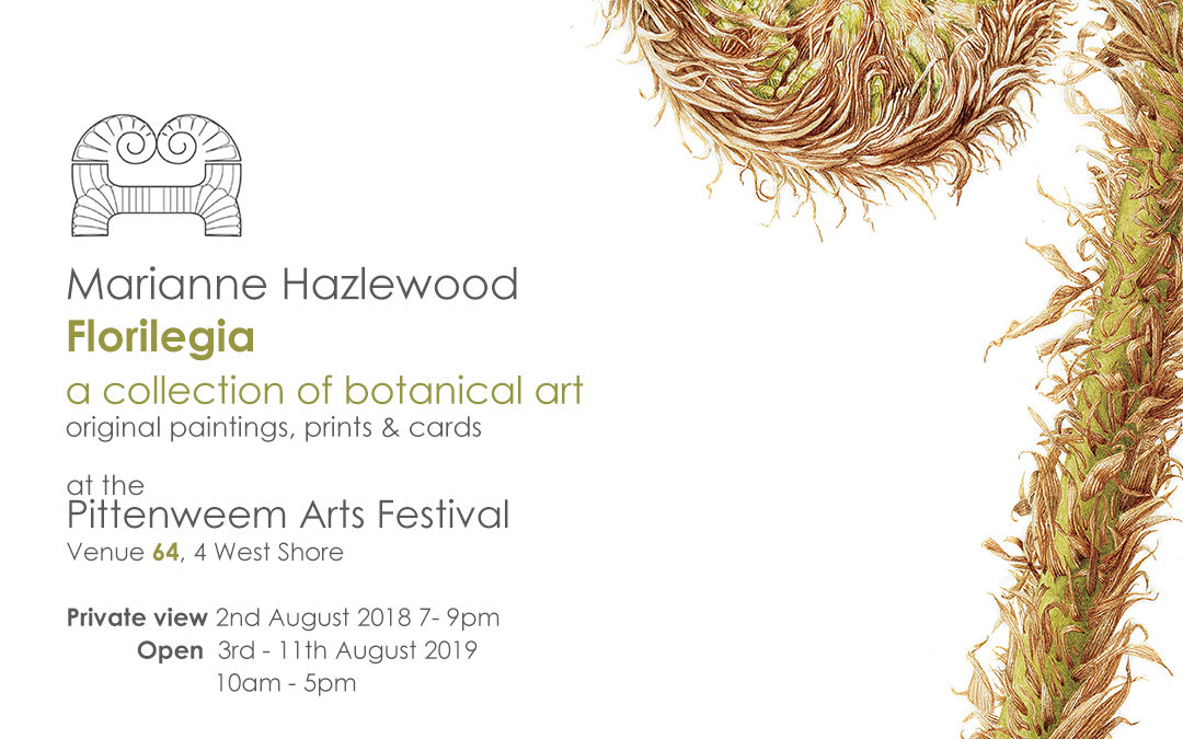 Members Exhibition: Marianne Hazlewood