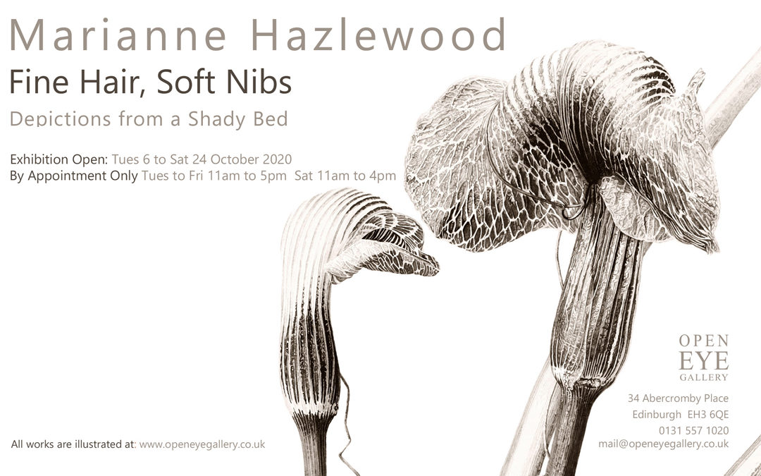 Members Exhibition – Marianne Hazlewood