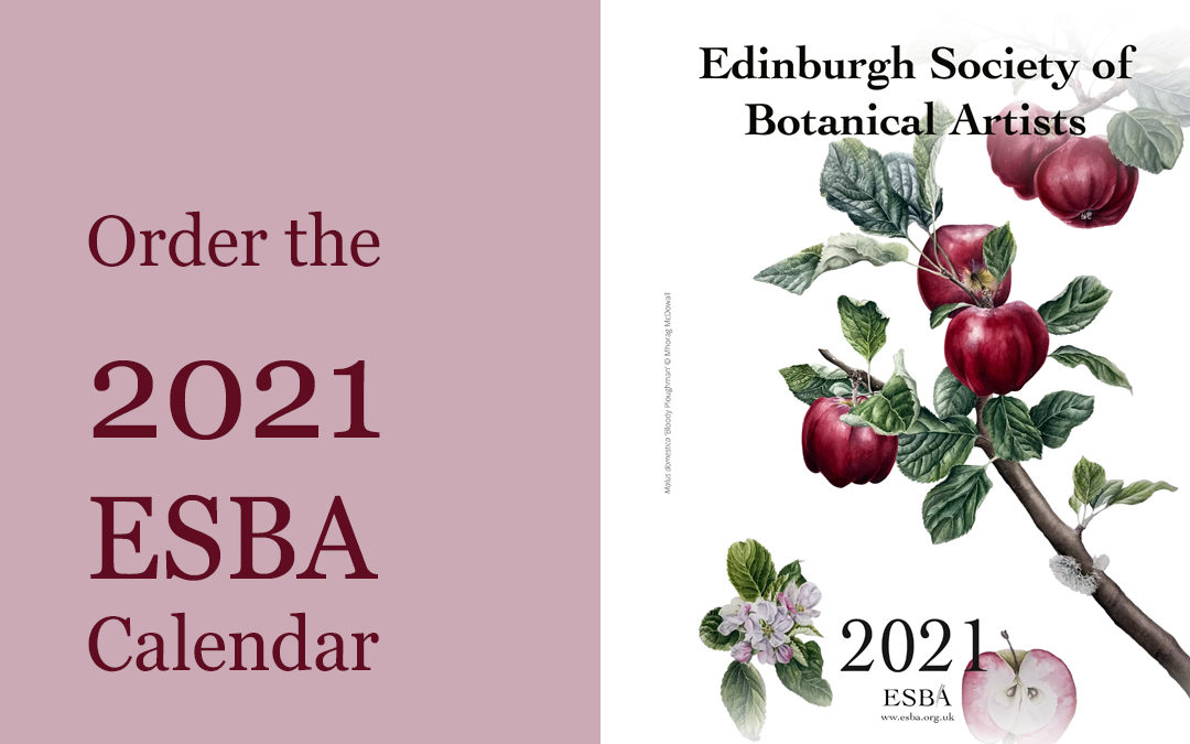 Ordering the 2021 ESBA Calendar – SOLD OUT