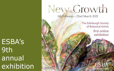 ESBA Exhibition – New Growth – Our first online exhibition!